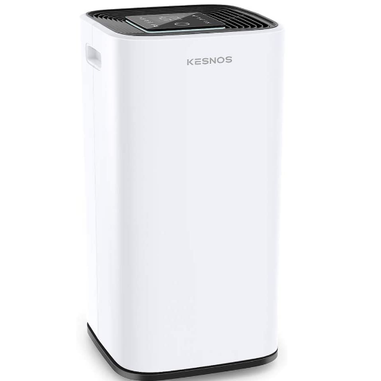 best ducted whole house dehumidifier